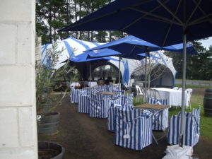 Vineyard- Echidna Pods with decorated tables and chairs
